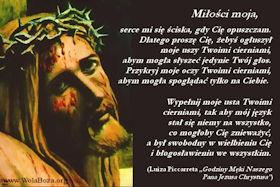 ciernie Jezusa